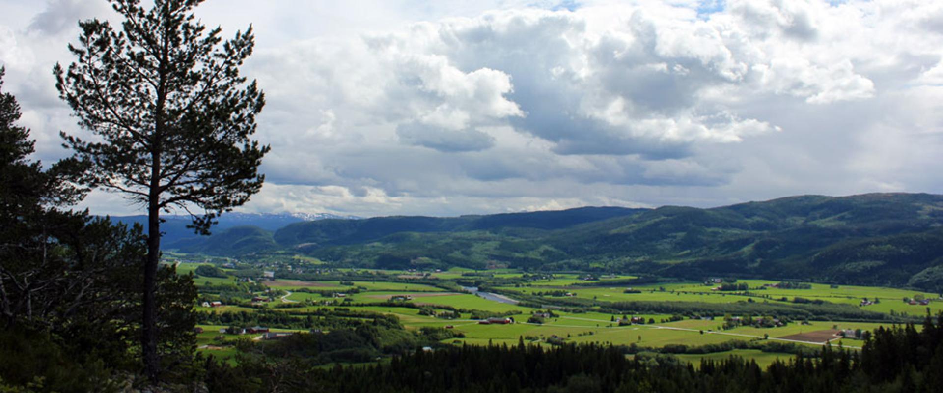 A view of St. Olavsleden